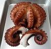 明石蛸の茹でダコ  大サイズ