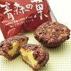青森名産 青森の菓 りんごティラミスケーキ 61201857
