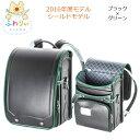 2016年度モデル KYOWA/協和 03-04145 シールドモデル 男の子用 ブラック×グリーン
