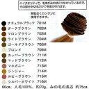 salonjapan エクステンションヒューマンヘアーみの毛 No704Mライトブラウン