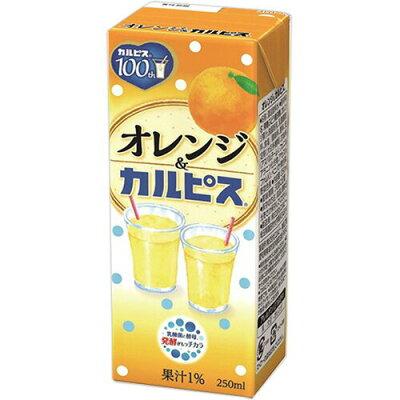 エルビー オレンジ&カルピス 250ml
