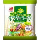 菊水 野菜とおいしく食べようサラダ用ラーメン 2回分 160g