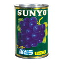 サンヨー堂 ぶどうキャンベル 中国産 4号 425g
