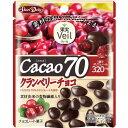 果実ヴェール カカオ70 クランベリーチョコ(41g)