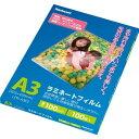 ナカバヤシ ラミネートフィルム E2タイプ 100ミクロン A3サイズ LPR-A3E2(100枚入)