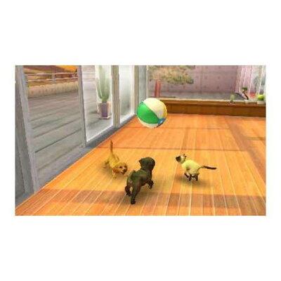 nintendogs + cats フレンチ・ブル&Newフレンズ/3DS/CTR-P-ADBJ/A 全年齢対象