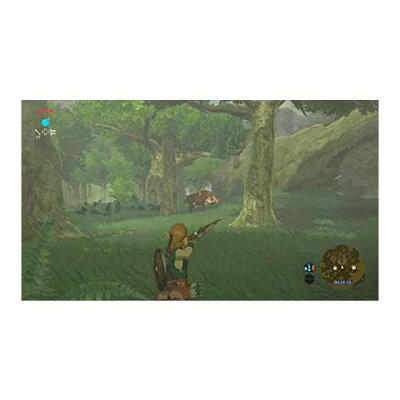 ゼルダの伝説 ブレス オブ ザ ワイルド/Wii U/WUPPALZJ/B 12才以上対象