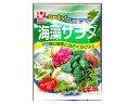ヤマナカフーズ 海藻サラダ ドレッシング付き 48g