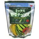 藤沢商事 ミックス野菜チップス 100g