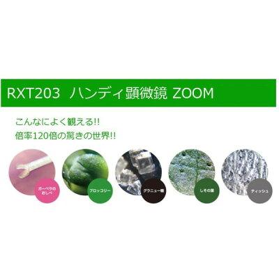 レイメイ 顕微鏡ZOOM RXT203N