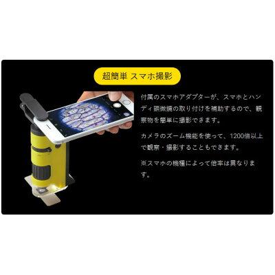 レイメイ藤井 ハンディ顕微鏡 DX グレー RXT300N