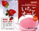 NITTOH あまおう果汁使用いちごオーレ 500g