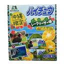 森永製菓 ハイチュウ シークヮーサー味 5本