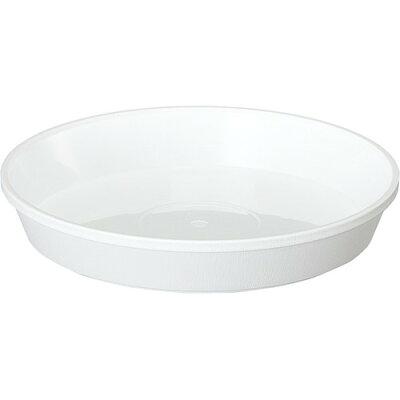 鉢皿サルーン 6号 ホワイト(1コ入)