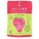 ヤマサン食品工業 おやつな果実 フリーズドライ いちご 20g