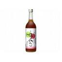 中野BC 梅のシロップ 梅の初恋 瓶 720ml