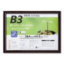 大仙 額縁 賞状額 金ラック-R B3 J335B4400 PET 樹脂製 SP