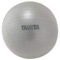 タニタ タニタサイズ ジムボール シルバー TS-952(1コ入)