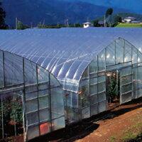 農ポリ 厚さ0.05mm×幅210cm×長さ100m