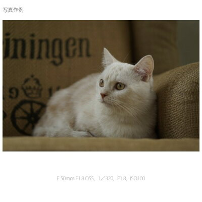 SONY  レンズ E50F1.8OSS(S)