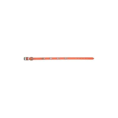 ダブルレザーカラーボーン オレンジ 2Lサイズ(1コ入)