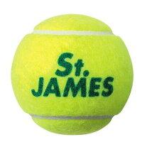 DUNLOP セントジェームス テニスボール 4個入×15ボトル