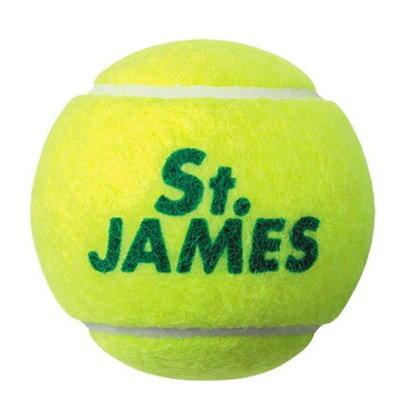 dunlop セントジェームス テニスボール  ボトル