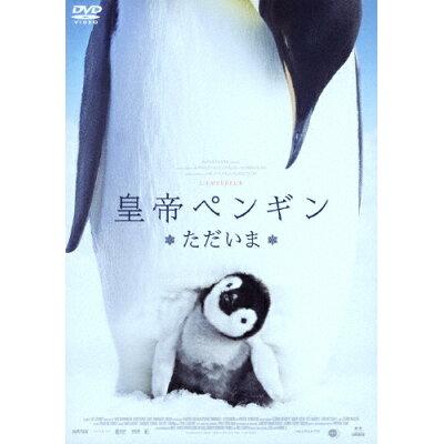 皇帝ペンギン ただいま/DVD/BIBF-3337