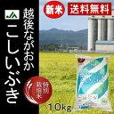 JA越後ながおか 国産特別栽培米 こしいぶき 10Kg