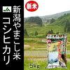 平成24年産 山古志コシヒカリ5kg(新潟産こしひかり)