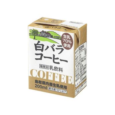 白バラ コーヒー 200ml
