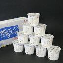 蒜山酪農農業協同組合 蒜山ジャージーヨーグルト 100X10
