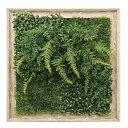 Shibafu ウォールグリーン Deodorize Art ISH-52845 美工社 55×55×15cm デオドライズアート 光触媒グリーンインテリア通販