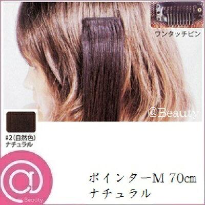 ポインター(M) #2(自然色) 70cm