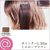 ポインター(L) #5(黄色系栗色) 30cm