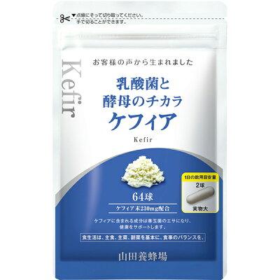 山田養蜂場 乳酸菌と酵母のチカラ ケフィア 64球