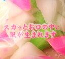 田村製菓 三角はっか糖 120g