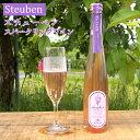 タムラファーム スチューベンのスパークリングワイン 300ml