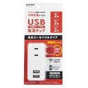 TOPLAND USBポート付き電源タップ TPP100-WT