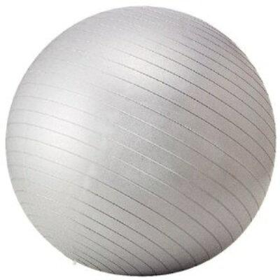 フィットネスボール STT-069(65cm)