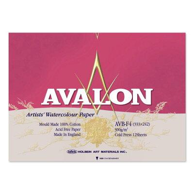 アヴァロン 水彩紙 ブロック AVB-F4