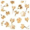東北花材/バクリフラワー ホワイト 約 /66182 プリザーブドフラワー 花材ナッツ 木の実 &フルーツ木の実