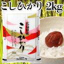 アクト 広島コシヒカリ 2kg