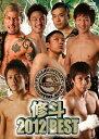 修斗 2012 BEST/DVD/SPD-2335