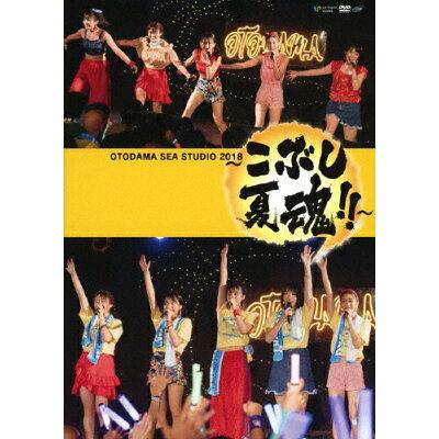 OTODAMA SEA STUDIO 2018 ~こぶし夏魂!!~/DVD/UFBW-1615