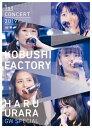 こぶしファクトリー ファーストコンサート2019 春麗 ~GWスペシャル~/DVD/EPBE-5601