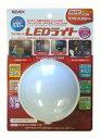リーベックス ワイヤレス LEDライトX100(1台)