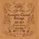 Aria アコースティックギター弦 AGS-200L