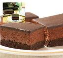 日東コーンアルム 五島軒 ベルギーチョコレートケーキ 200g