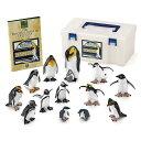 鳥類 動物 生物フィギュア 立体図鑑リアルフィギュアボックス ペンギン